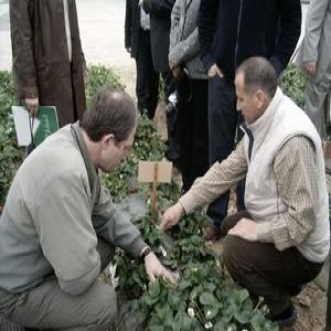 Agribusiness Development Project for Moldova